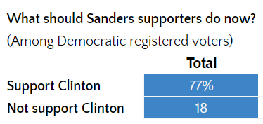 what-should-sanders-supporters.png
