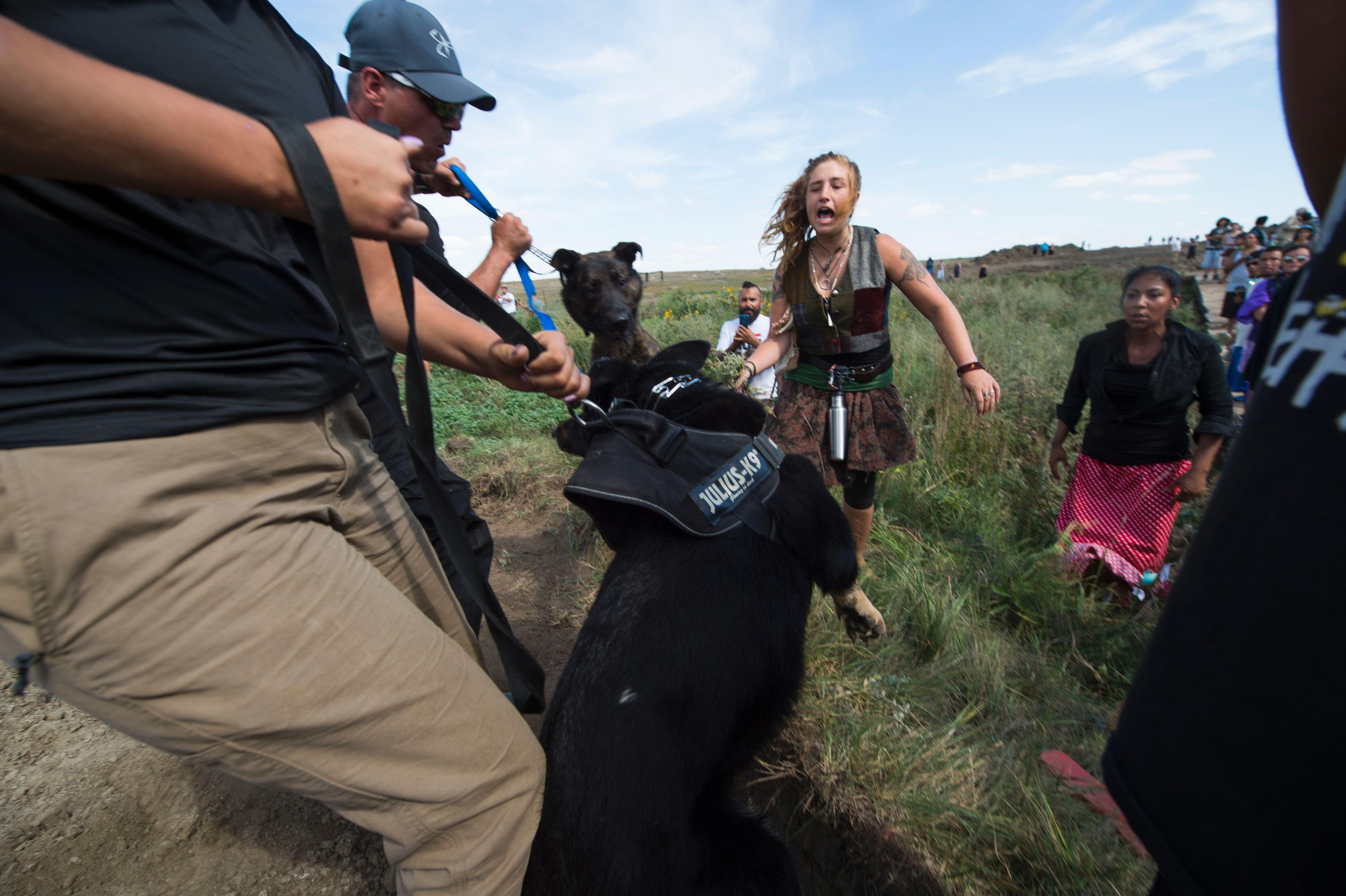 Guards accused of unleashing dogs, pepper-spraying oil pipeline protesters 231f060afa4d