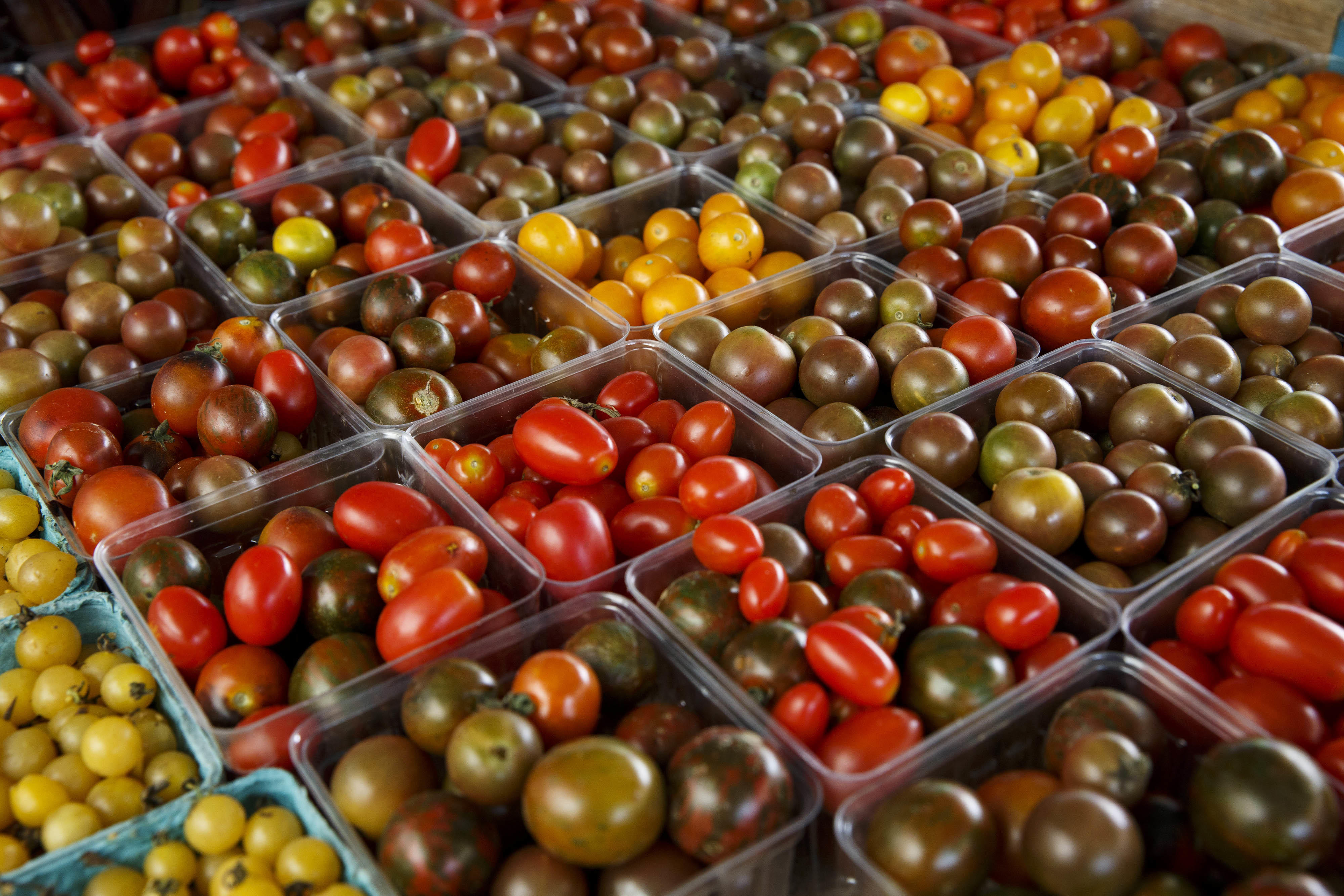 Finally Science Explains Why You Shouldn T Put Tomatoes In The Fridge Cbs News
