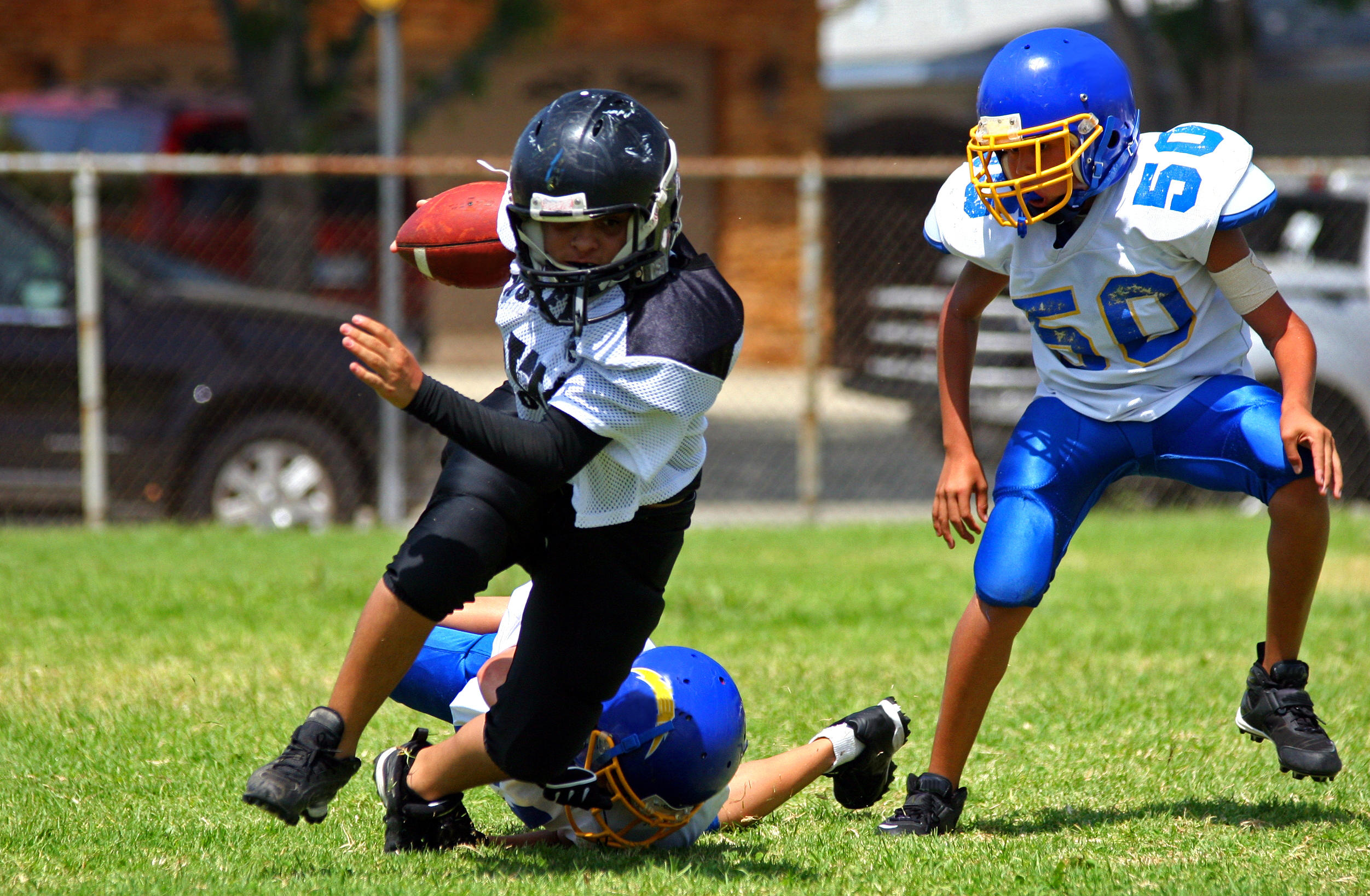 Concussion Doctor Says Kids Shouldnt >> How Many Parents Hold Their Kids Back From Sports Due To Concussion