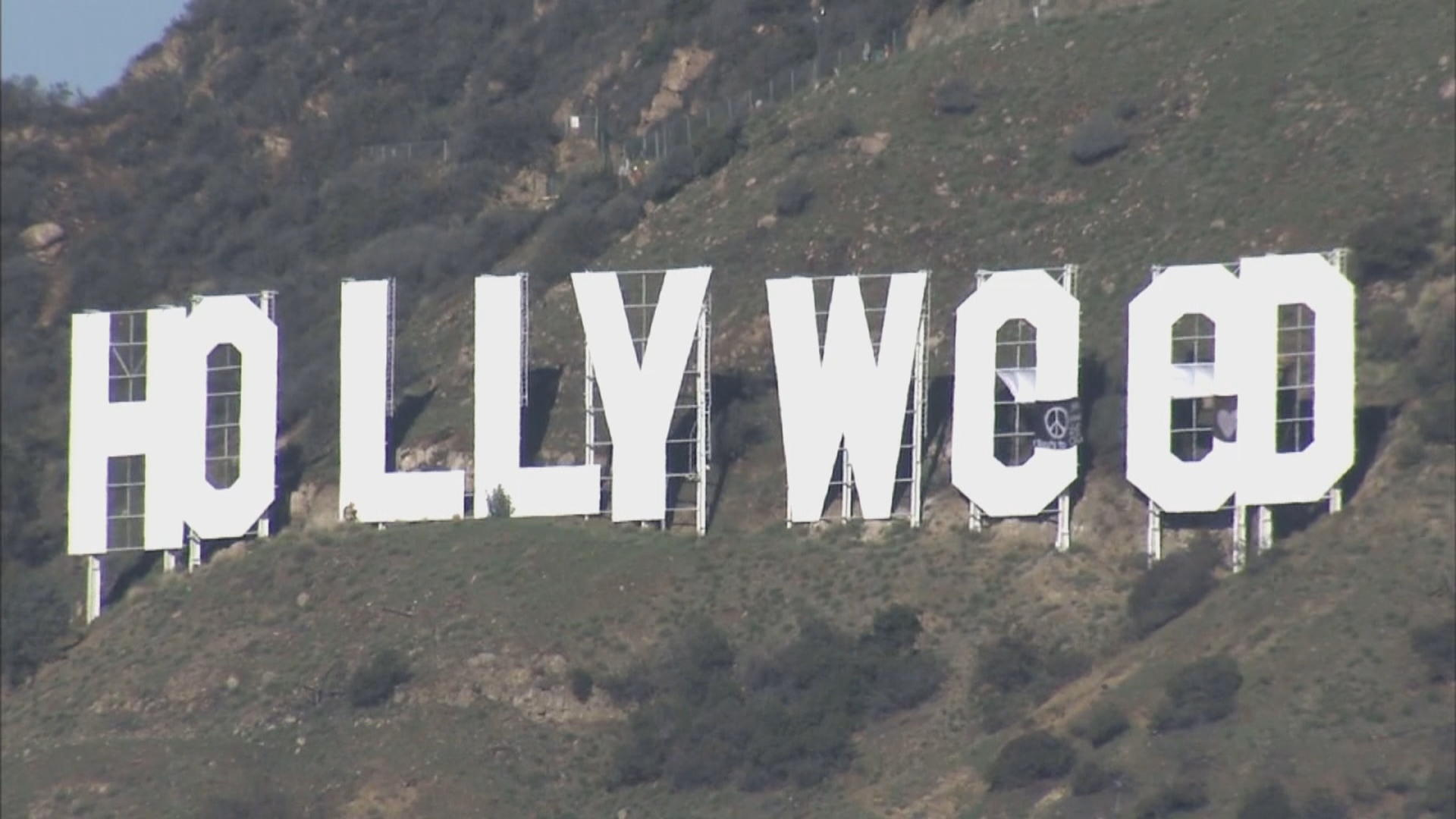 Los Angeles police arrest suspect in