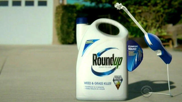 Ingredient in Roundup weed killer going on list as