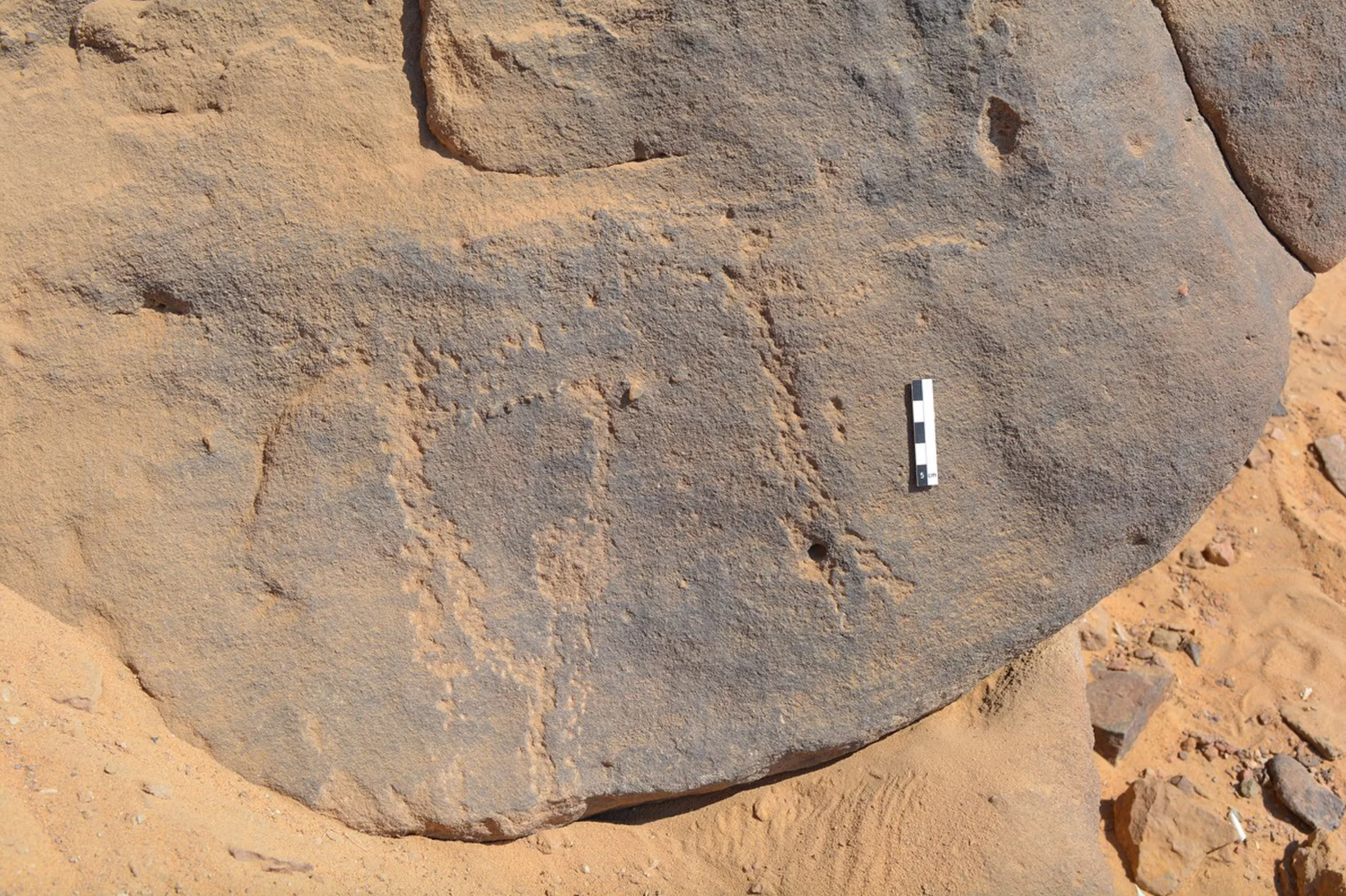 Ancient rock carvings depicting masked people discovered