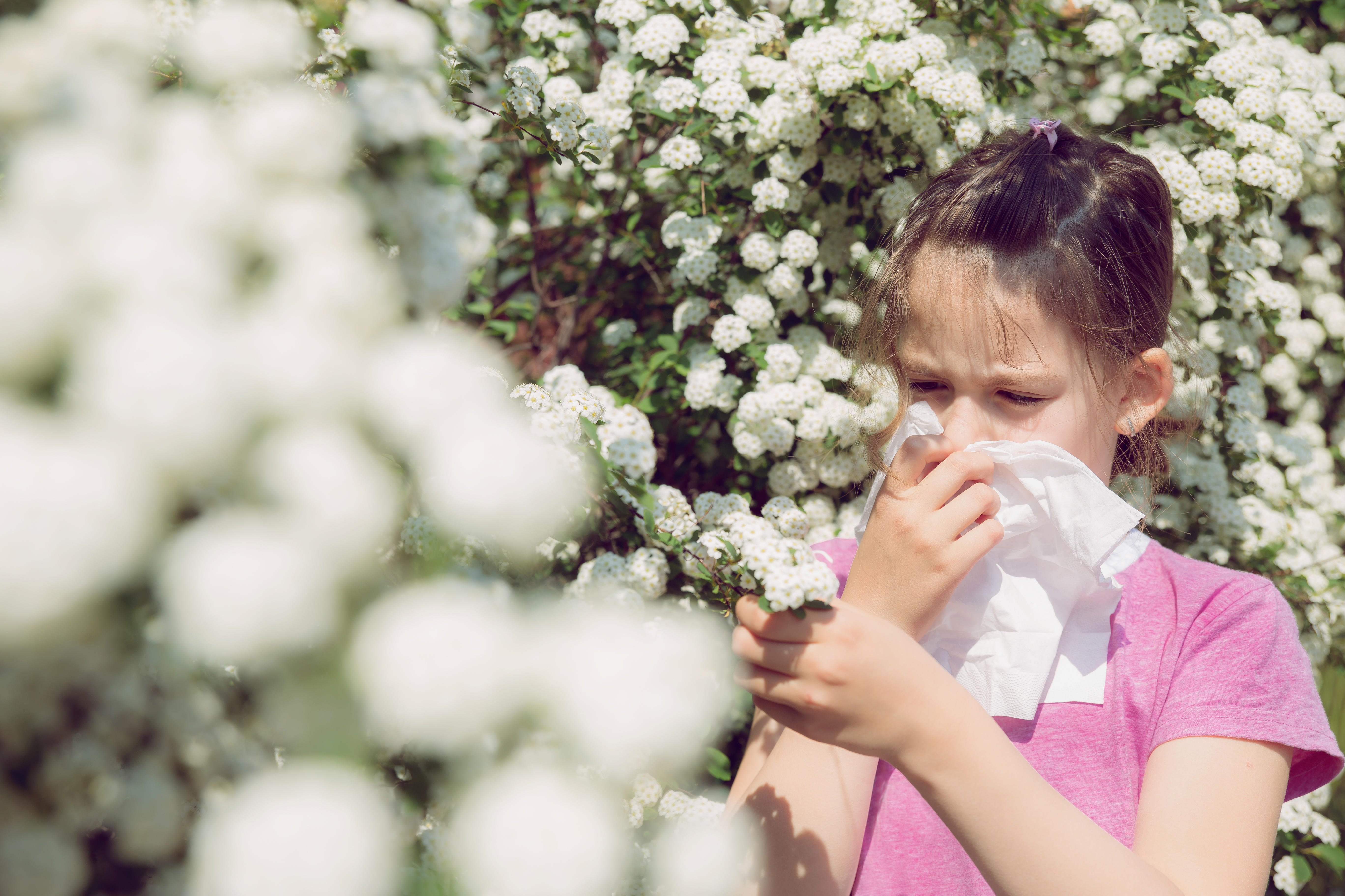 How to pick the right allergy medicine for kids - CBS News