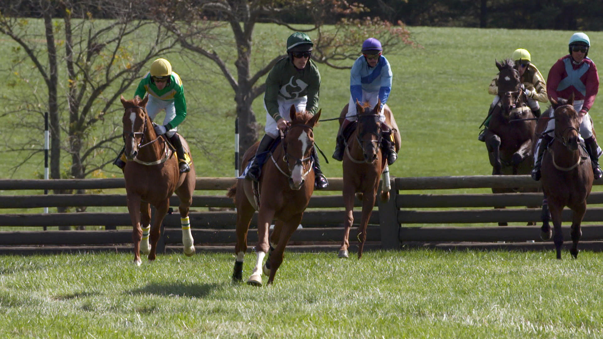 Horse racing not for the faint hearted cbs news for Steeplechase