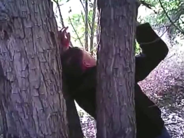Video shows rescue of man found with hands nailed to tree