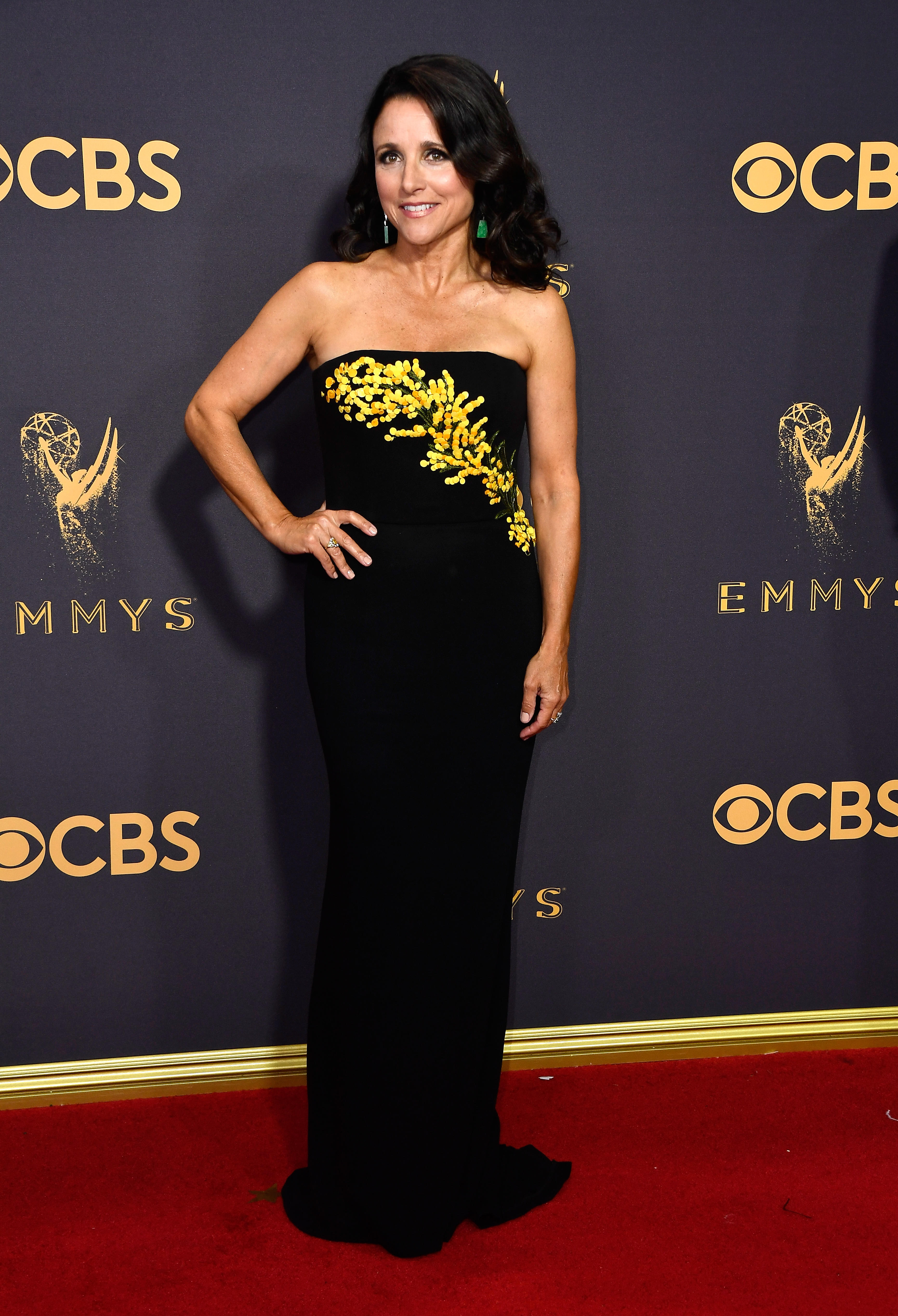 Julia Louis Dreyfus Star Of Quot Veep Quot Reveals Breast Cancer