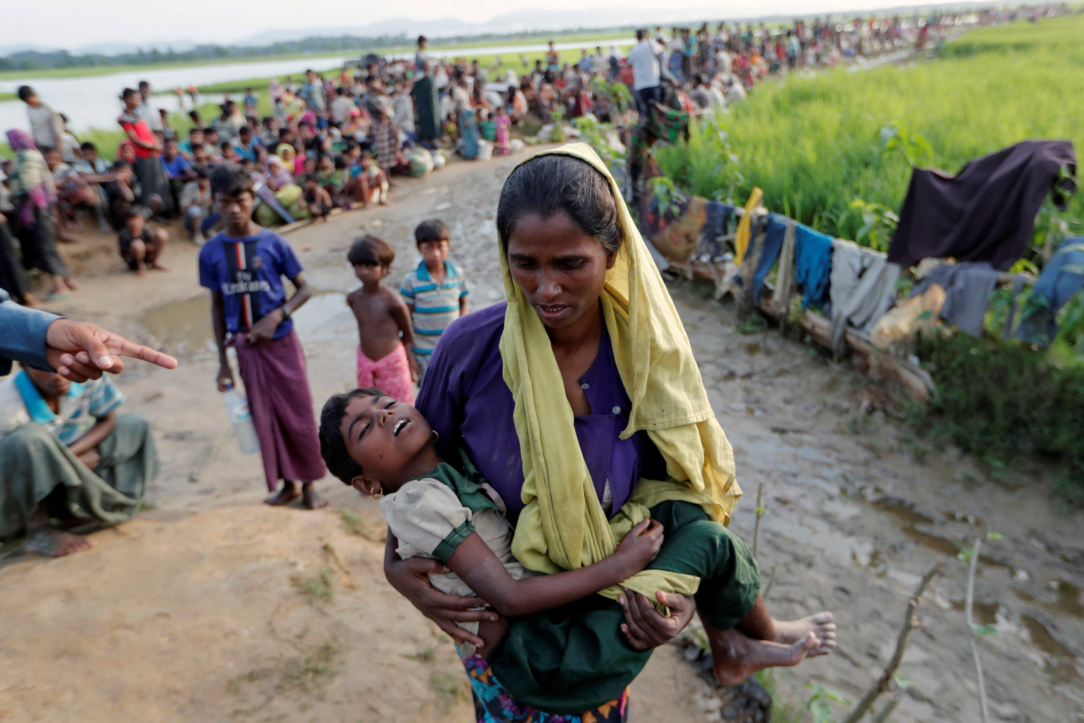 how to help rohingya refugees