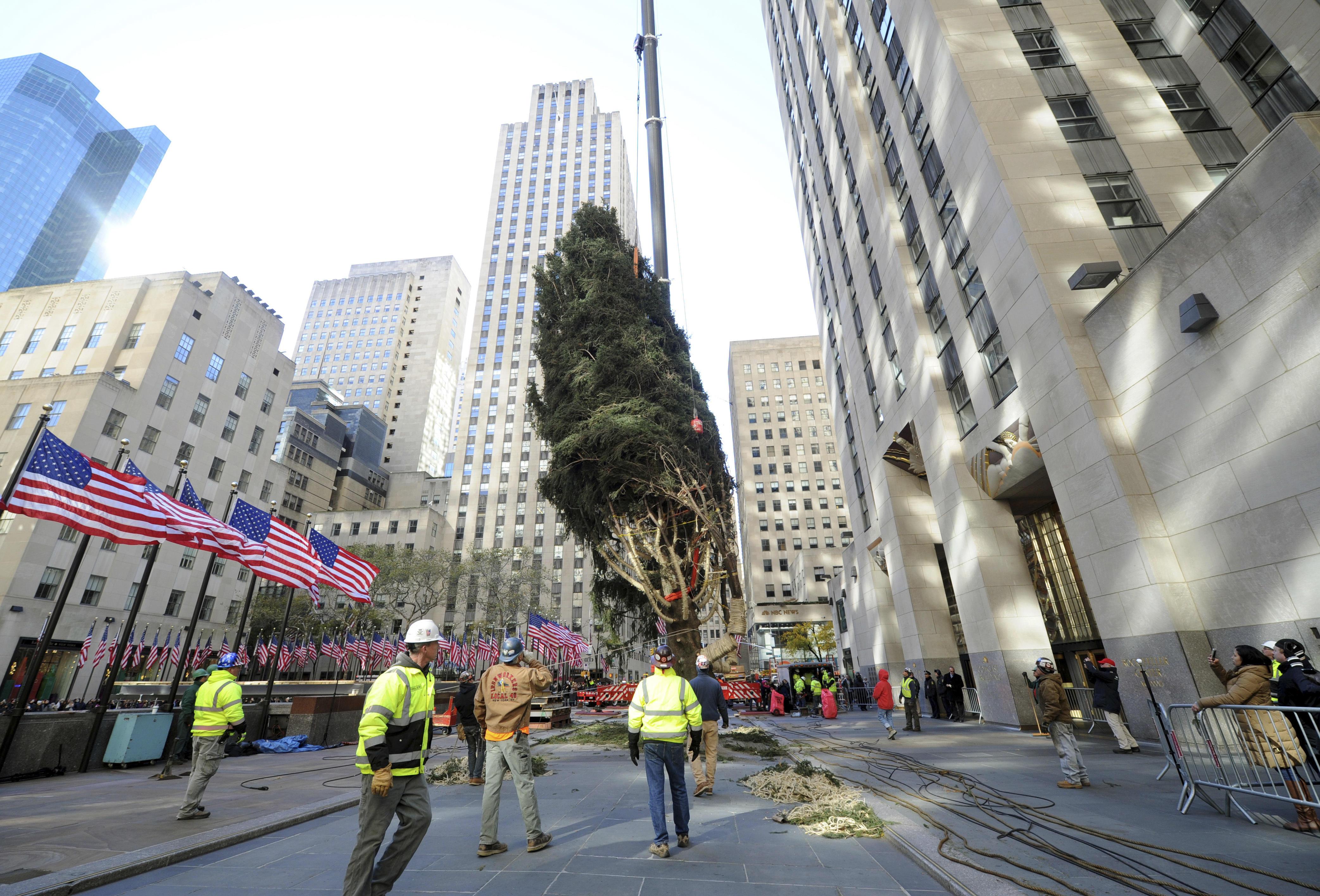 New York For Christmas.2017 Rockefeller Center Christmas Tree Arrives In New York