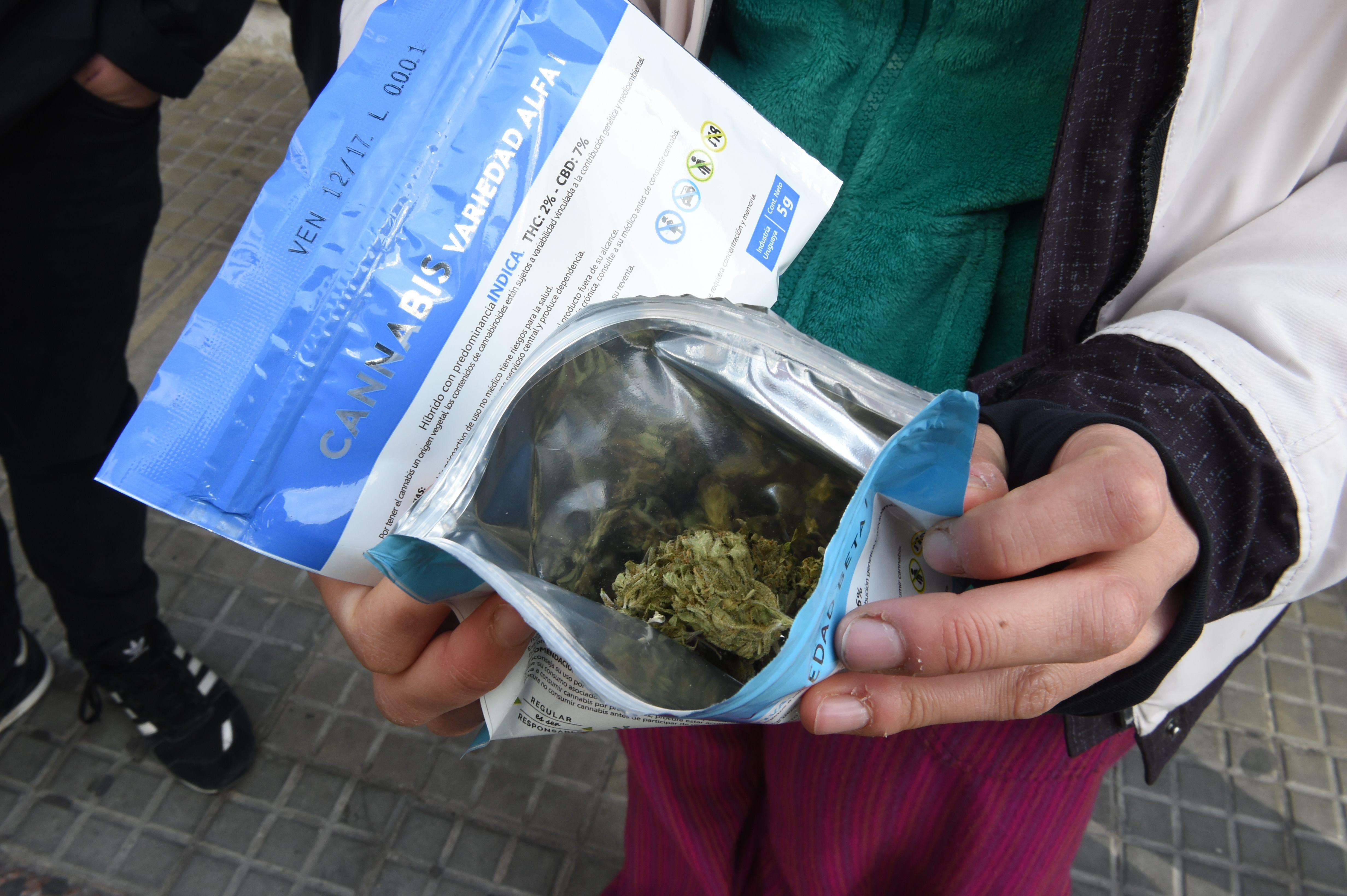 uruguay marijuana legalization leads to pot shortage as demand