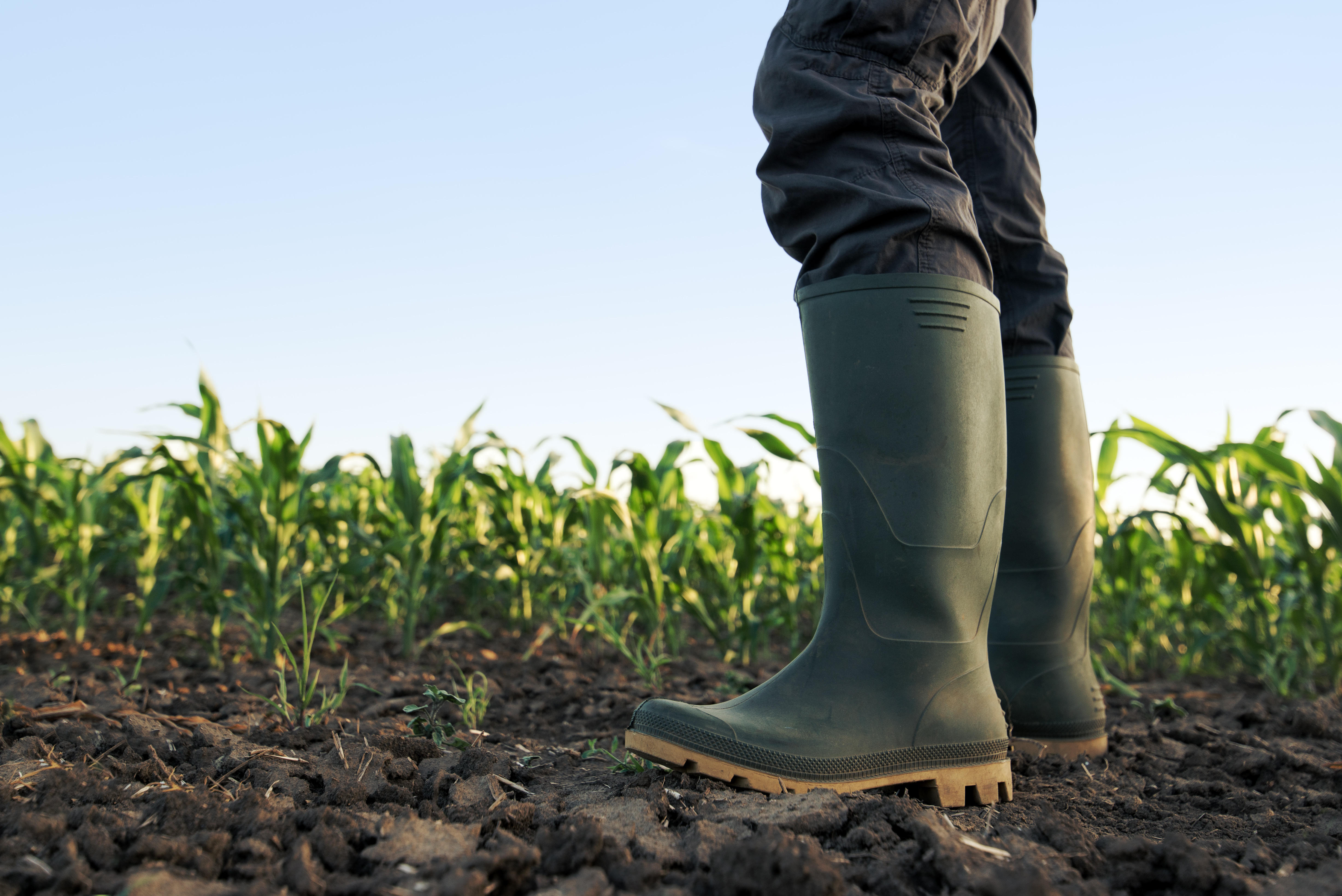 Farmers in America are facing an economic and mental health crisis