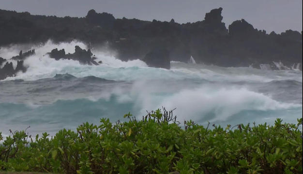 Image result for hurricane lane
