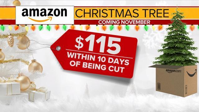 amazons holiday plans shipping fresh 7 foot christmas trees cbs news - Christmas Tree Amazon