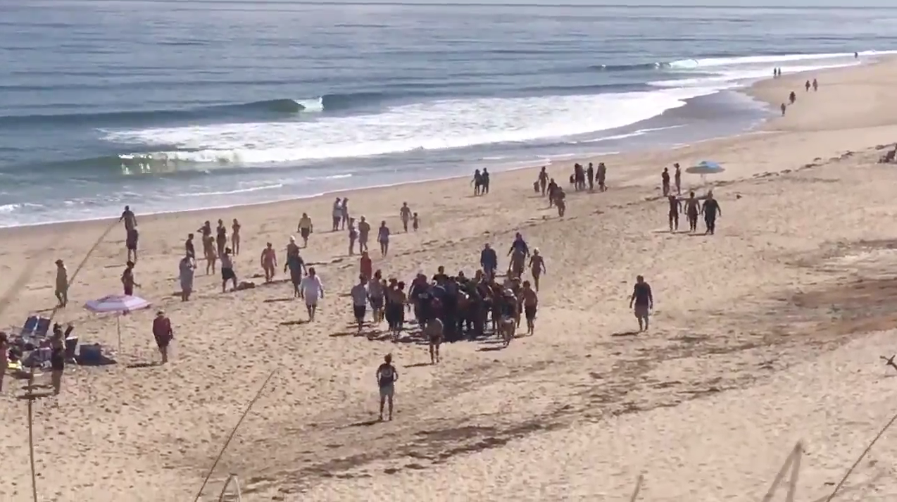 Cape Cod shark attack: Man dies after shark attack at a beach in