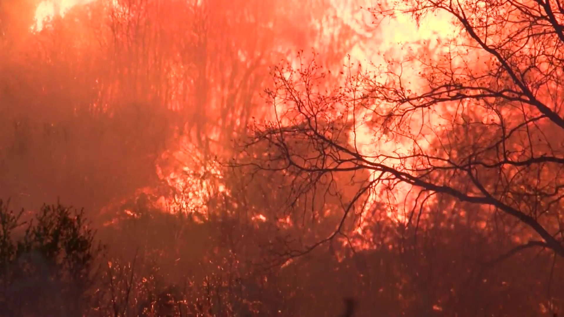 Fire In California Evacuations Ordered For Areas Of Paradise Ca As