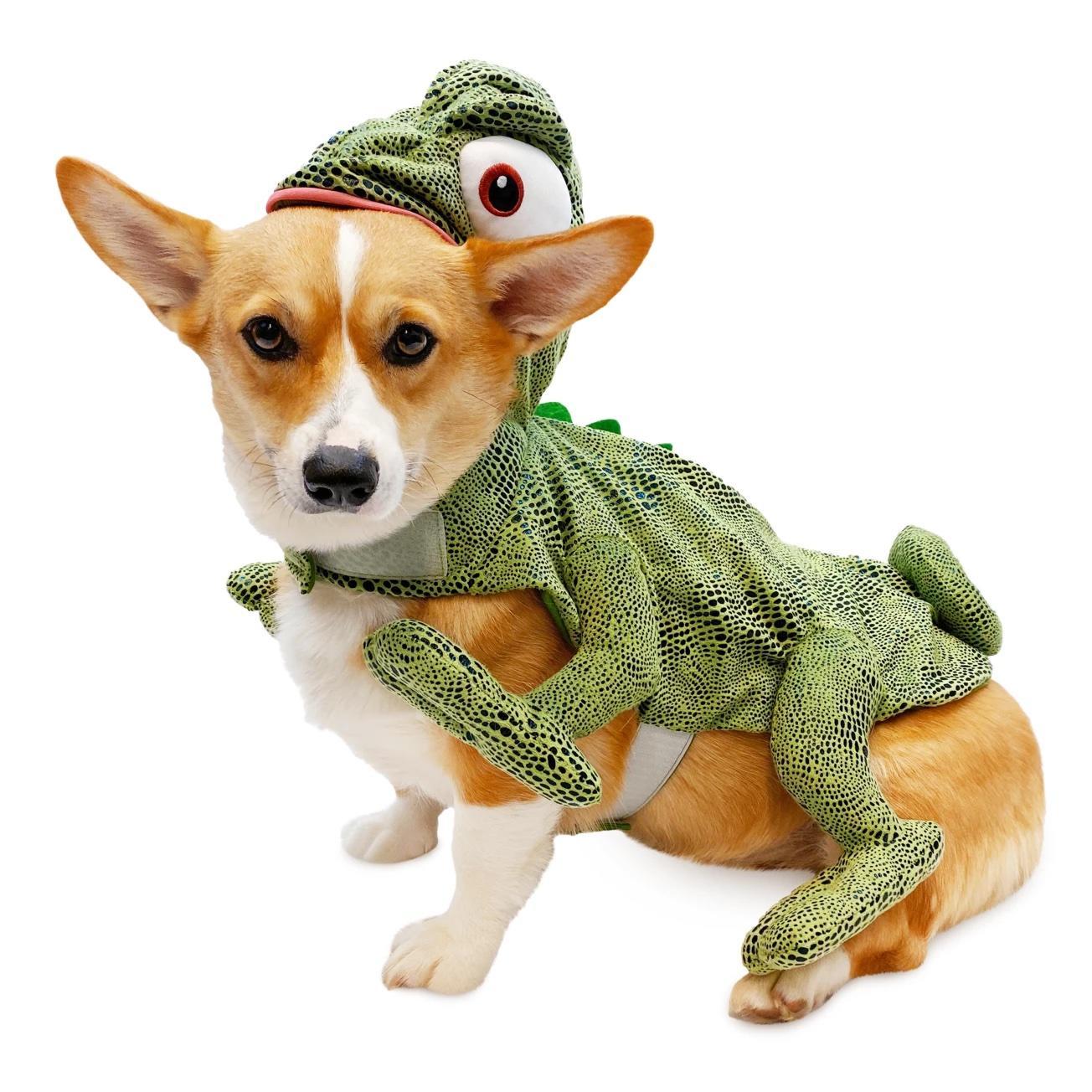 Disney Pascal Pet Costume