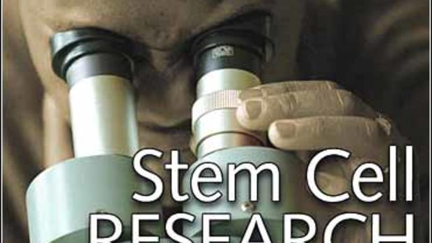 stem cell opposition American scientists politically mobilized — as they rarely had before — in opposition to president bush's funding policy stem cell research became a prominent.