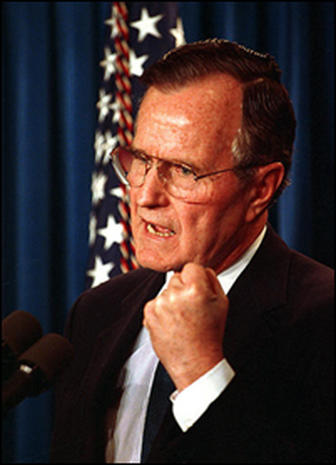 The Bush Years, 1989 - 1993