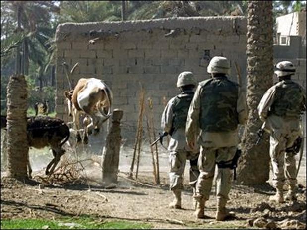 Iraq Photos: Aug. 18 - Aug. 25