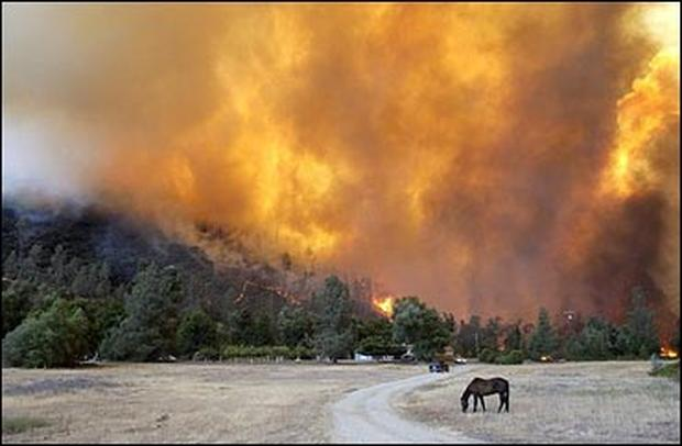 August Fires