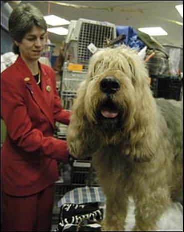 2005 Dog Show