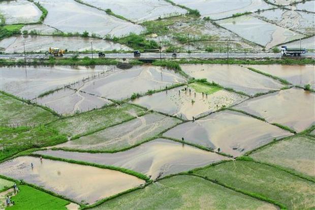 India Monsoon: Rains Continue