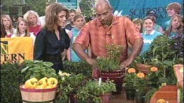 Not too late to plant veggie garden cbs news for National gardening association