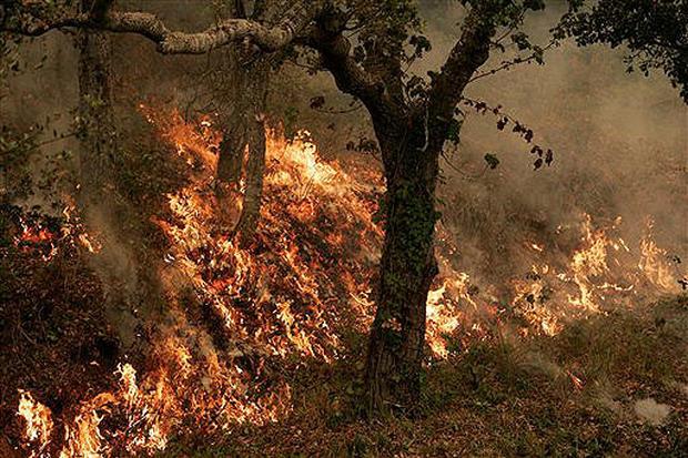 Big Sur Blaze