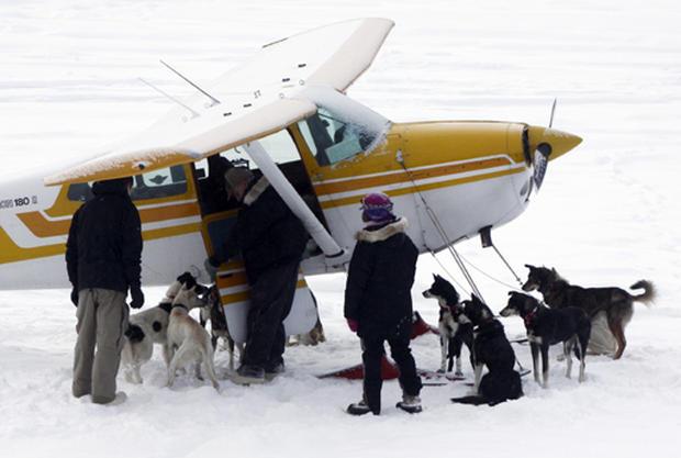 Iditarod Dog Sled Race