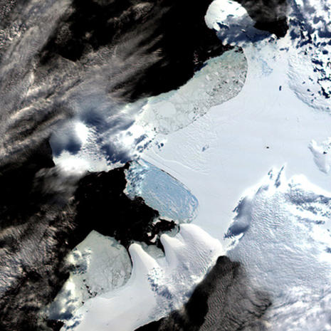 The Wilkins Ice Shelf