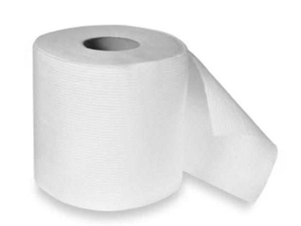 Jersey Man Charged for Dumping Wet Toilet Paper on School from Plane