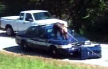 Escaped Chimp Attacks Police Car