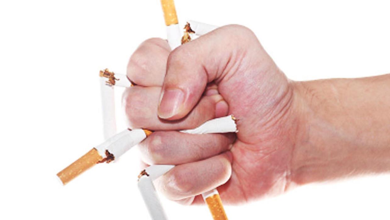 smoking term paper