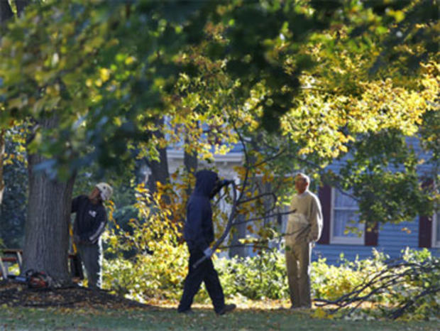 Study Finds Criminals Avoid Homes Near Big Trees