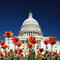 washington_dc_capitol_building_000005071672XSmall.jpg