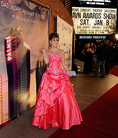 Adult Film Awards