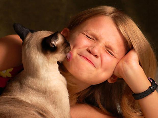 cat_lick_iStock_000013724415XSmall.jpg