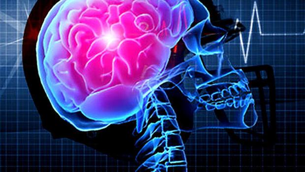 helmet_brain.jpg