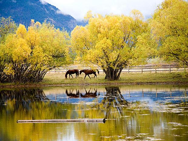 montana_iStock_000004495110.jpg