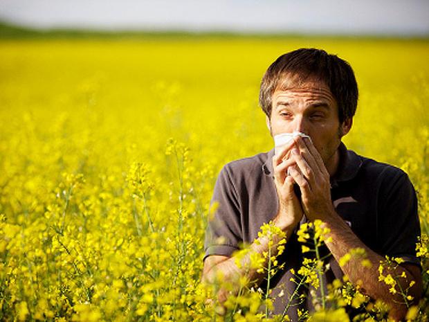 allergy_iStock_000013055247_1.jpg