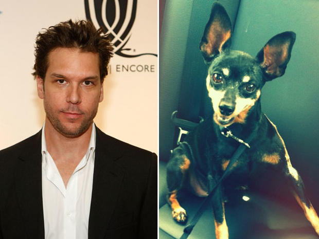 Dane Cook finds missing dog, thanks Twitter followers