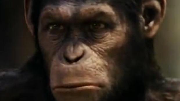 """Planet of the Apes"": 6 decades of monkey mayhem"
