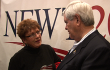 Gingrich cuts climate change chapter in new book