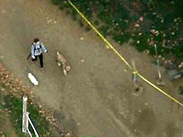 A dog walker is seen in the Hollywood Hills area of Los Angeles Jan. 17, 2012, after police responded to a report that a human head was discovered nearby.