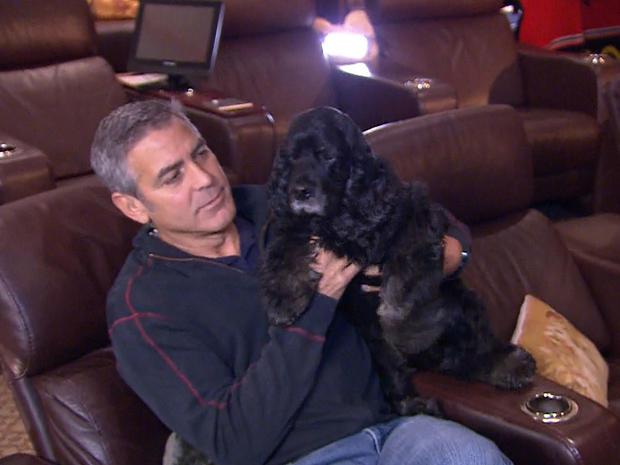 038-Clooney-w-dog-Einstein-.jpg