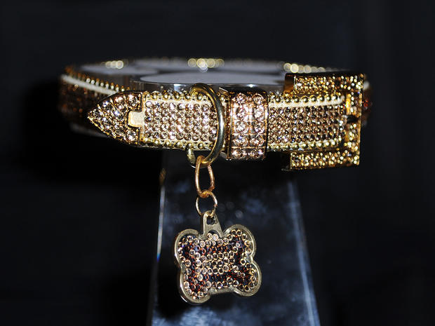 Golden Collar Awards 2012