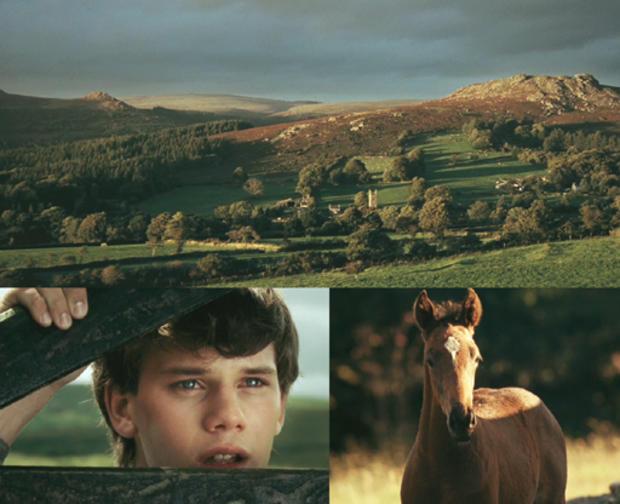 Warhorse_Devon.jpg