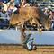 sports_aptopix_AP120427035478.jpg