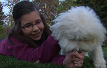 Kids with dogs less likely to develop asthma: study