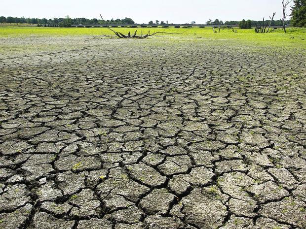 drought8.jpg